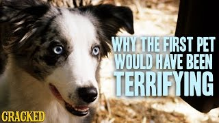 Why The First Pet Would Have Been Terrifying - Stuff That Must Have Happened