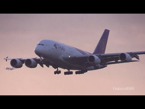 Thai Airways International Airbus A380-841 HS-TUD Landing at Narita