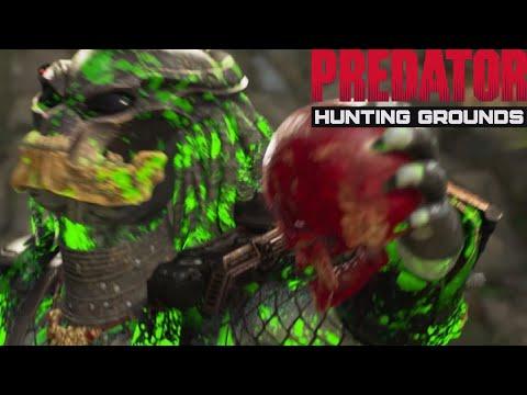 Predator Hunting Grounds EP 312: Jungle Hunter 87' Berserker |