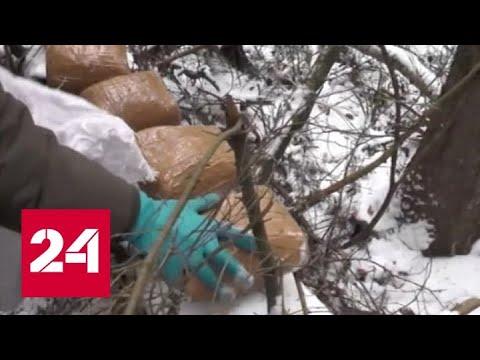 Украина становится поставщиком наркобаронов - Россия 24