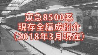 東急8500系 現存全編成紹介(2018年3月現在)