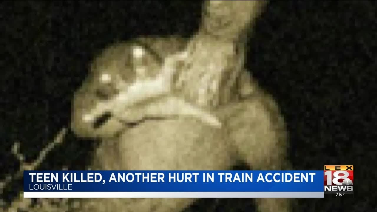 Teen Killed, Another Hurt In Train Accident