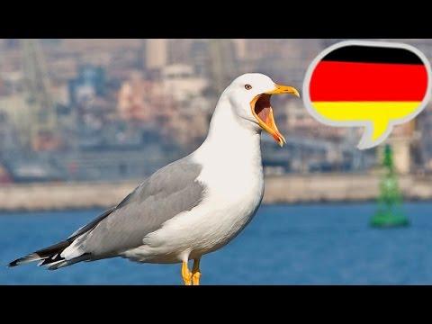 анекдоты про немцев -