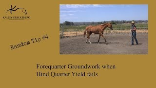 Ground Control when Hind Quarter Yield fails (Reactive Horses)