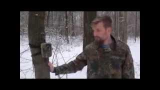 Камера слежения за животными с отправкой mms сообщений Scout Guard 660