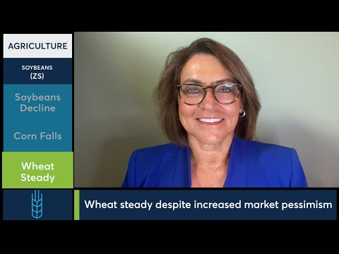 July 30 Grains Commentary: Virginia McGathey