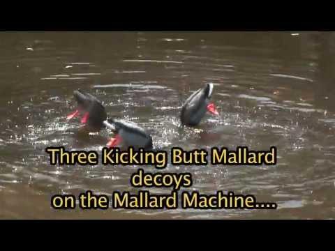 Mallard Machine and