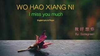 Wo Hao Xiang Ni lyric (I Miss You Much) - Pinyin & English - Learn Chinese by songs Mp3