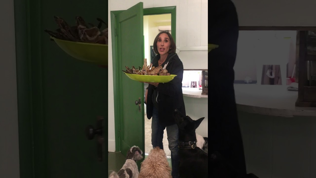 Thanksgiving Treats For Dogs
