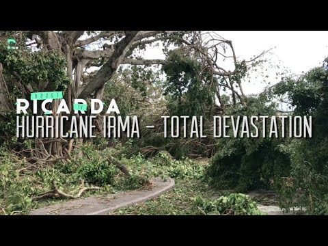 HURRICANE IRMA IN MIAMI - before // during //after