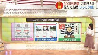 旅行で最大5000円お得! 「ふっこう割」活用術(19/12/17)