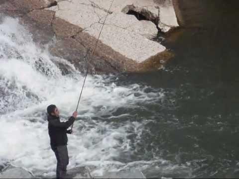 Piru Creek-パイルー沢: Fly Fishing Journal/新毛鉤紀行2