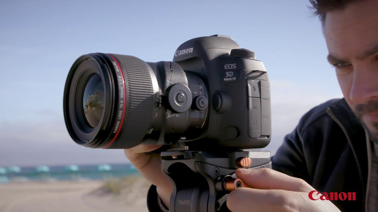 Tilt-Shift | TS-E 90mm f/2 8L MACRO | Canon USA