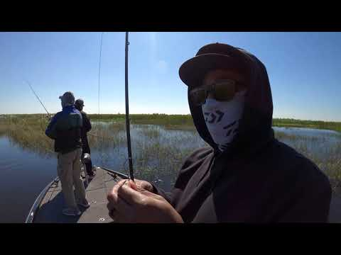 Bass Fishing Lake Okeechobee 2020