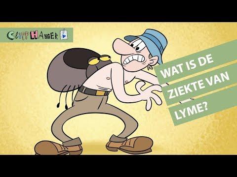 Wat is de ziekte van Lyme?