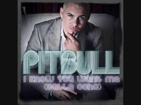 Pitbull - I Know You Want Me Calle Ocho REMIXES Instrumental