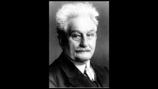 Janacek Sinfonietta 2nd Movement