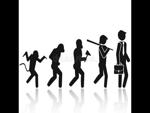 CÓDIGO / ÍCONE DA EVOLUÇÃO - KARLLA NAYNNA - BANDA SPICY MIX