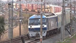 【ダイヤ改正前、最後の走行】貨物列車5050レ 照らす夕日を背に東へ…