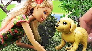 Видео для девочек. Барби ищет хозяина собаки