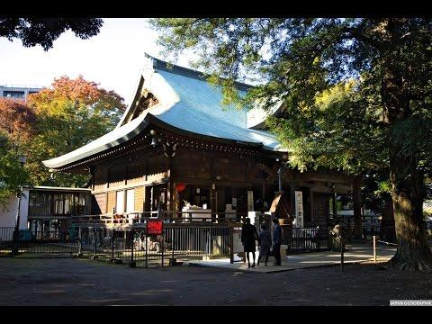 JAPAN GEOGRAPHIC 4K 東京 鬼子母神堂の秋 Kishimojindo,Toshimaku,Tokyo