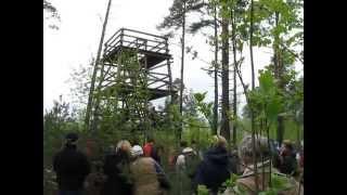 Ott Lepland- Laululinnuhaldjas. Pääsküla vaatetornis