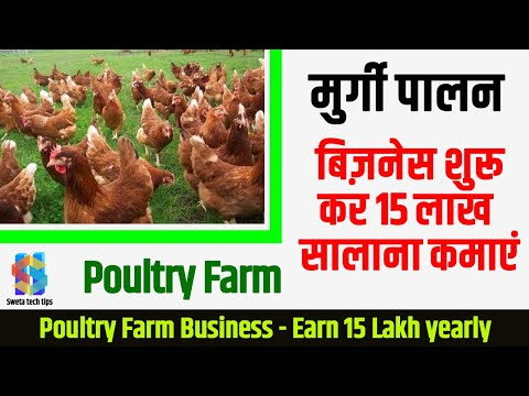 Start Poultry Farm Business, Earn 15 Lakhs Per Year in Hindi