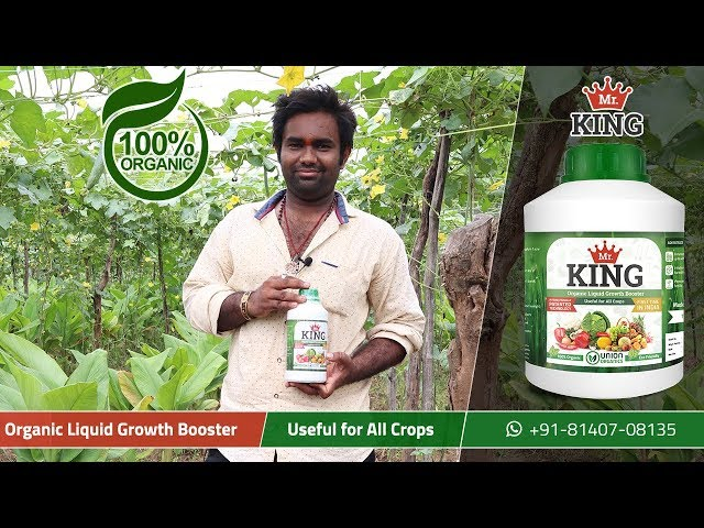Mr. King – 100% Organic Liquid Growth Booster | Extremely Beneficial for Sponge Gourd (Galka)
