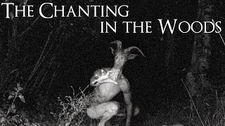 """The Chanting in the Woods"" Creepypasta"