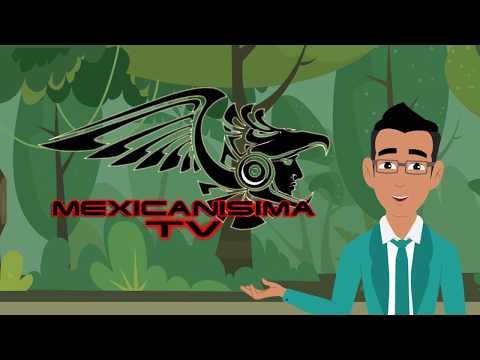 Conoce el Proyecto de Mexicanísima TV y nuestra ONG Arte y Renovación para los artistas del mundo.