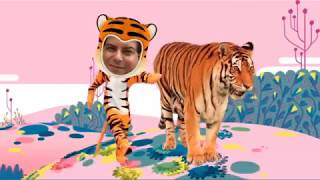 SB Animals- Tiger in the Jungle
