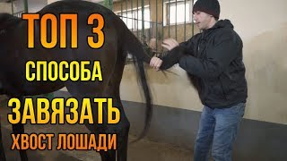 TOP 3 METHODS how to tie a horse tail or a horse KNOTS pony tail Tips about horses | Horse breeding