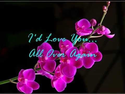 Alan Jackson   -   I'd Love You All Over Again   ( audio - lyrics )