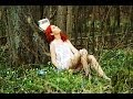 Lekcja 4 - Ćwiczenia z liczeniem W PODSKOKACH - YouTube