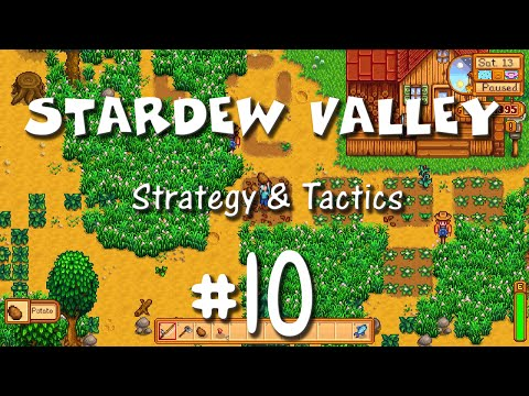 Stardew Valley Strategy & Tactics 10: Clearing the Way