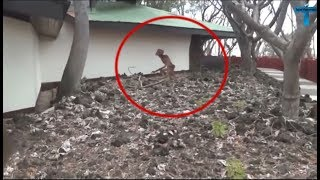 Top 10 Videos Skeptics Can't Explain Caught On Camera - Unbelievable Mysterious Videos