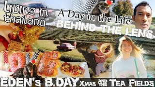 TEA PLANTATIONS Of MAESALONG (WANG PUT TAN), Edens B.Day & XMAS LIVING IN THAILAND-(ADITL BTL EP10)