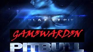 Pitbull - Took My Love GAM3WARD3N HD Remix (New June 2011)