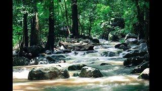 [แนะนำที่เที่ยวชลบุรี] เส้นทางน้ำตกชันตาเถร บางพระ ชลบุรี