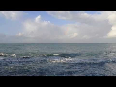 The Ocean... from Treasure Beach, Jamaica