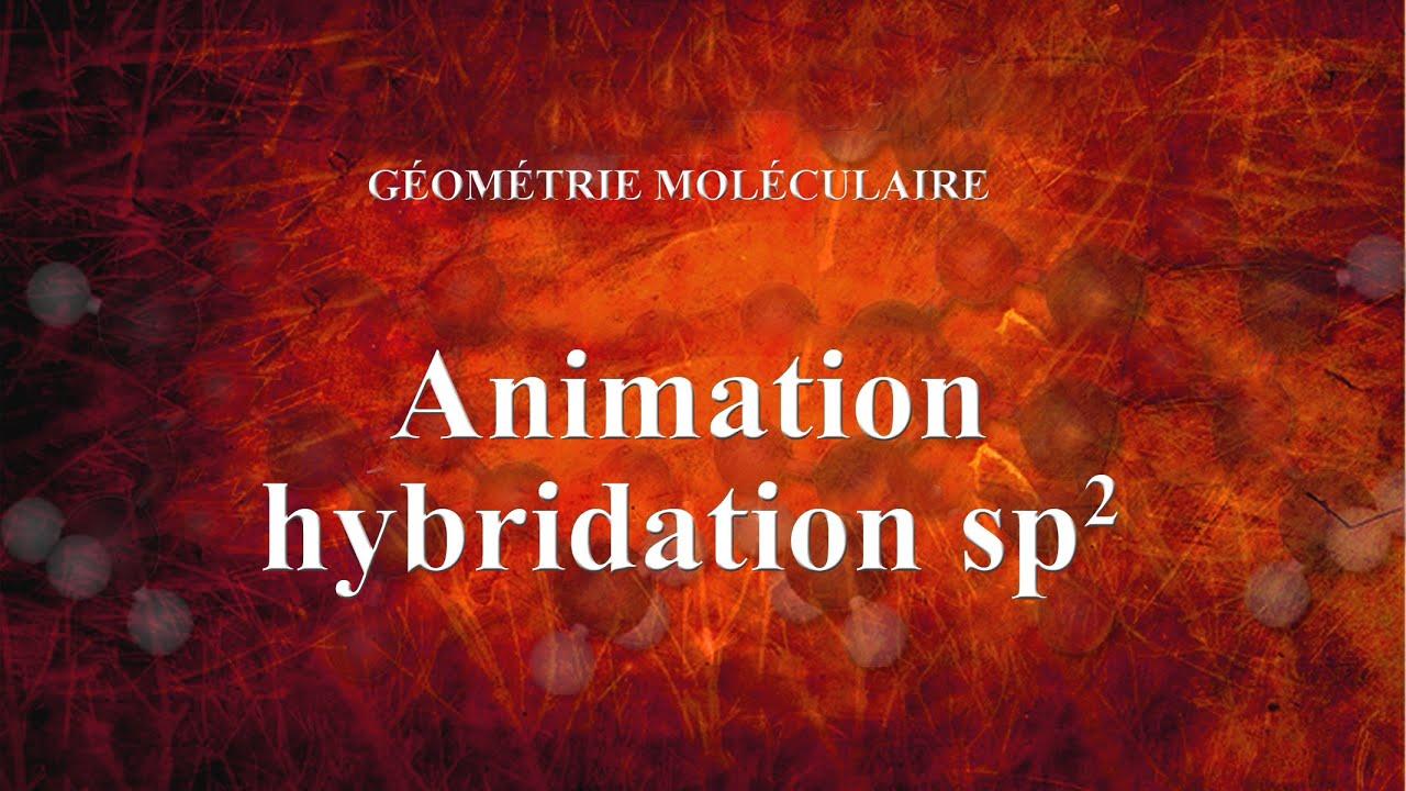 Film animations sp2