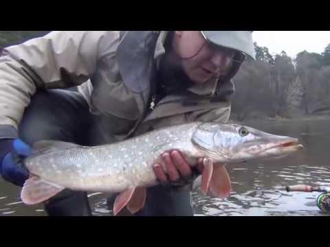 рыбалка ловить на как хлыст в русская игре