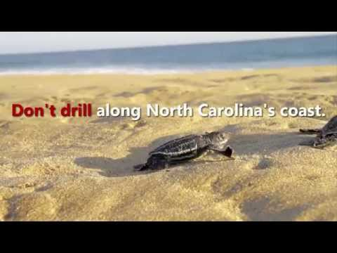 Don't drill along NC's coast. Protect our beaches.