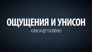 Ощущения и Унисон. Александр Палиенко.