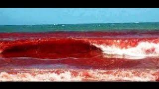 vuclip Water turned into blood in South Africa . Devil or God? (satanism-devilish)