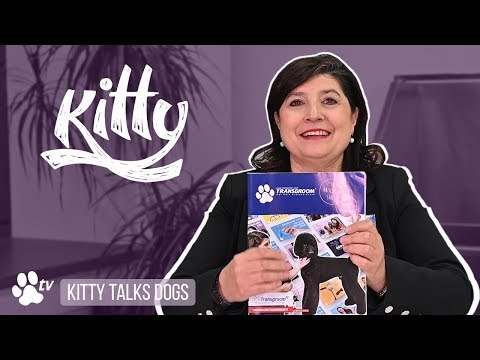Kitty's dog grooming journey | Kitty Talks Dogs - TRANSGROOM