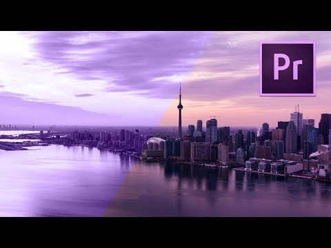 Become a BEAST at Premiere Pro FAST!