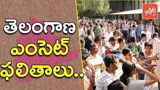తెలంగాణ ఎంసెట్ ఫలితాలు ...| Telangana Eamcet Results Releasing Today... ! YOYO TV Channel