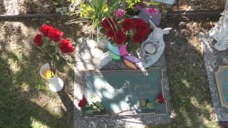 Olinger Chapel Hill Cemetery & Rachel Scott