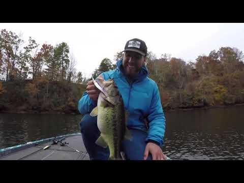 Lake Burton Fishing Guide- FATTY ALERT
